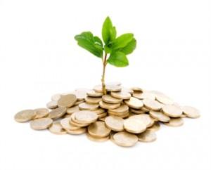 geld-plant
